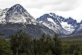 Tierra del Fuego,Bahia Lapataia park