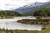 Bahia Ensenada,Tierra del Fuego