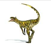 Herrerasaurus dinosaur,artwork