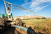 Mobile Irrigation Robot