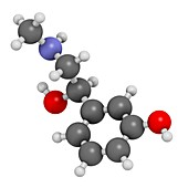 Phenylephrine decongestant drug molecule