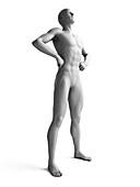 Man standing,hands on hips,illustration