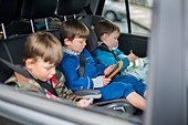 Three brothers in car with digital device