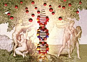 DNA as the Tree of Knowledge,artwork