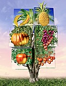 Genetically modified food,artwork