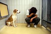 Laboratory dog