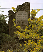 Gregor Mendel monument