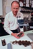 Biologist,Don Schloesser,with Zebra mussels