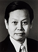 Chen Ning Yang,Chinese-American physicist
