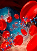 Red blood cells and molecules,artwork