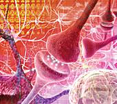 Nerve synapse,composite computer artwork