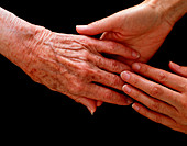 View of young hands holding an elderly hand