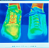 Sports trainers,thermogram