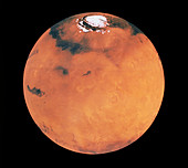 Mosaic of images of Mars northern hemisphere