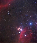 Orion nebulae