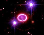Supernova 1987a remnant,HST image