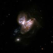 Interacting galaxies NGC 3690 and IC 694
