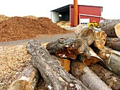Biomass power plant,Sweden