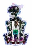 AIBO the robot dog,X-ray