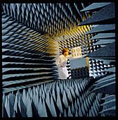 Testing radio antennae in an echo-free chamber