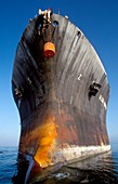 Oil storage tanker hull