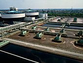 Tanks and pools for bacterial treatment of sewage