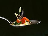 House cricket on a spoon