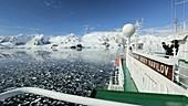 Antarctic transport ship and coast