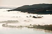Morning mist over Lake Windermere,UK