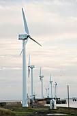 Wind turbines,Blyth,UK