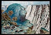 Victoria Falls buffalo,19th century