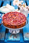 A plum cake on a cake stand