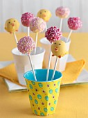 Cake pops in cups
