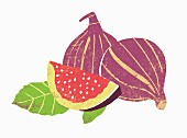 Fresh figs with leaves (illustration)