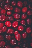 Cranberries (full-frame)