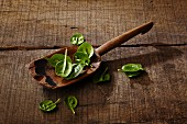 Spinach leaves on a wooden spoon