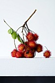 Rambutans on a sprig