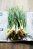 Fresh spring onions on a piece of newspaper