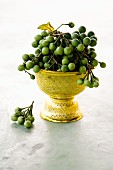Pea-sized Thai aubergines in a golden goblet