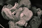 Frische Shiitake-Pilze (Schwarz-Weiss-Aufnahme)