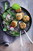 Broccoli and bulgur burgers with cress, radish and spinach