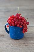 Redcurrants in an enamel mug