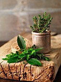 Fresh herbs on a wooden board and in a terracotta pot