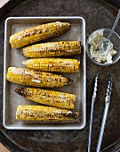 Grilled corn cobs with herb butter on a baking tray