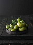 Green tomatoes on a metal tray
