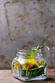Dandelion leaves and flowers in a jar on a rusty metal surface