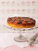 Kuchen mit getrockneten Aprikosen und Pflaumen