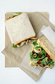Lunch Box Legends - Mediterranean Style Sandwiches