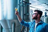 Bierbrauer bei Qualitätskontrolle des Bieres (USA)