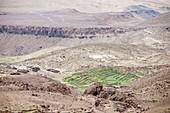 Terraced fields,Morocco